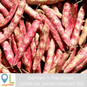 Haricots coco (LES 100 GR)