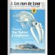 #52 - Reportage Une baleine à Confluence